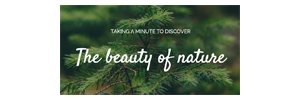 Logo of The Beauty of Nature.